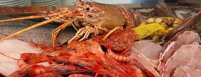pescadoibiza