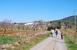 Pla de Corona (Foto: Xescu Prats)
