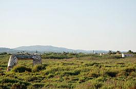 Ses Feixes, en Ibiza ciudad (Foto: Xescu Prats)